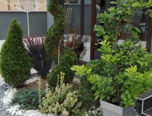Uređivanje privatnog dvorišta Dobanovci